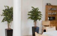 Få et smukt og grønt kontor med kunstige planter